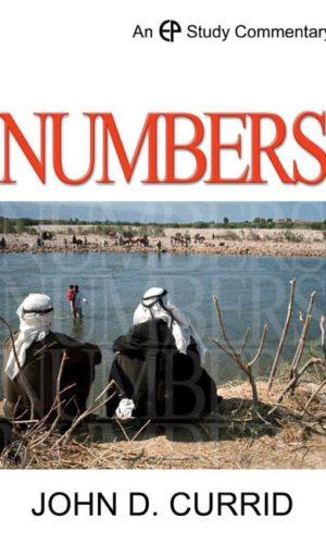 IVP_Numbers
