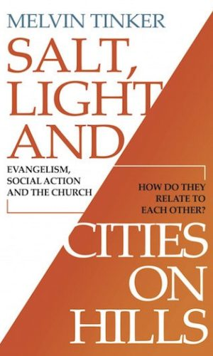 USA_SALT_LIGHT_and_CITIES_on_HILLS_COVER_8.5_X_5.5_.303_spine_copy